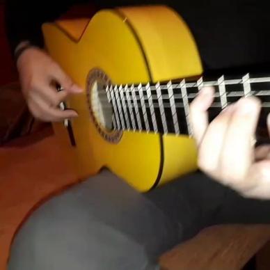 Musica - Sogni e Bisogni Animazione Caserta